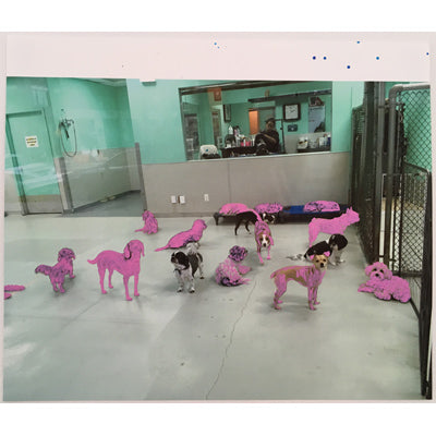 Pink Dogs