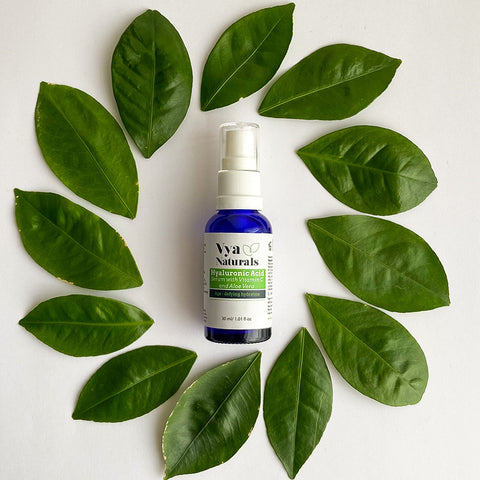 Hyaluronic Acid against air pollution