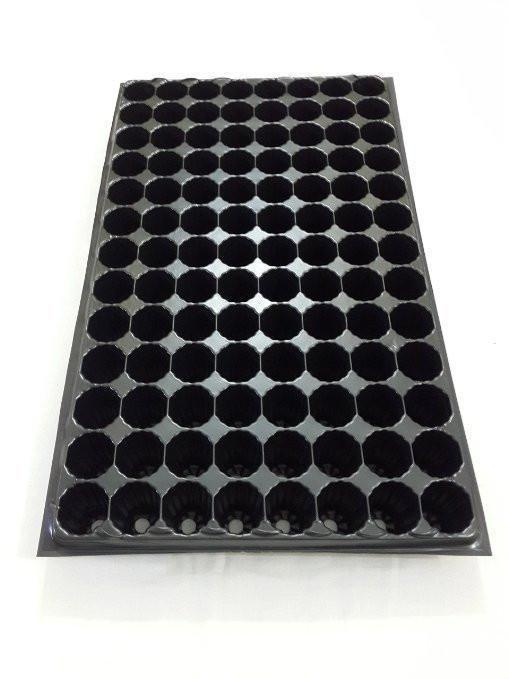 Cell Tray - (104 Cells) Seed Germination Tray For Kitchen Gardens & Greenhouses (Pack Of 2 Trays)