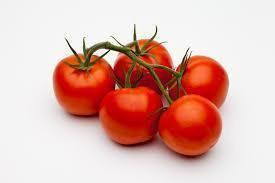 Vegetable Seeds - Tomato Vegetable Seeds