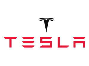 Tesla - Hype On The Inclusion Effect Fizzles (300)