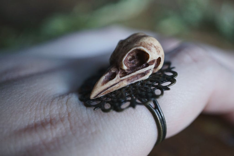 Raven Skull Adjustable Ring Ring