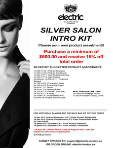 SILVER SALON INTRO KIT