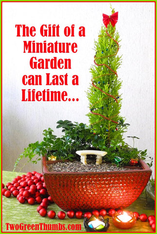 Christmas in the Miniature Garden
