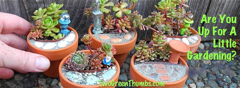 Mini Mini Gardening with Two Green Thumbs