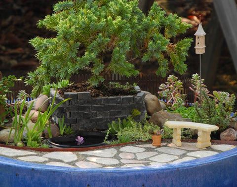 Gardening in Miniature with TwoGreenThumbs.com