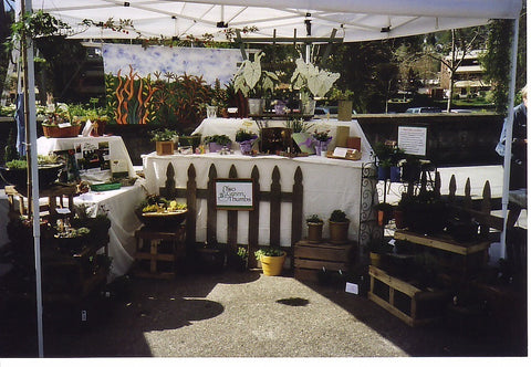 Miniature garden booth at a local art and crafts market