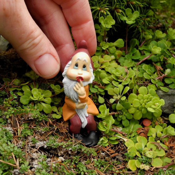 Miniature Garden Gnome - The Wonder Gnome