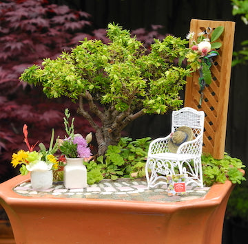 Customized for YOU! A Miniature Garden Kit, Books & Shipping Included!
