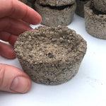 Mini Hypertufa Pot, Medium