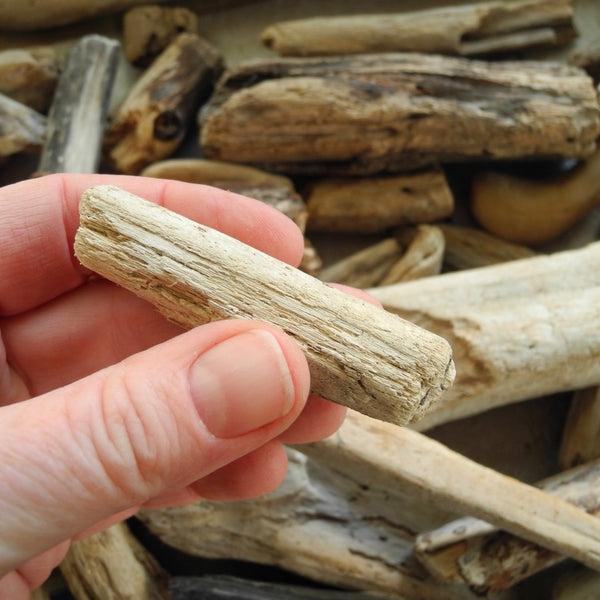 Real Driftwood Logs, Set of 3