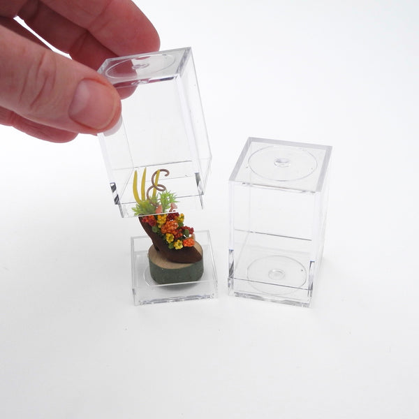Display Box - Small