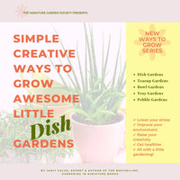 Simple Creative Ways to Grow Awesome Little Dish Gardens, 1.0 - PDF eBook