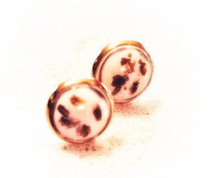 Ivory & Gold Studs