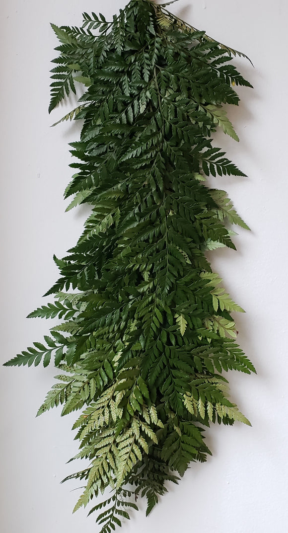 Leatherleaf Garland ($4.40 per foot)