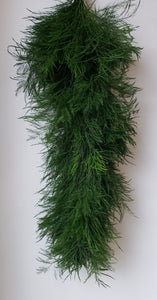 Tree Fern Garland ($6.25 per foot)