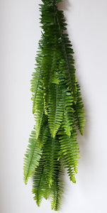 Boston Fern Garland ($4.00 per foot)