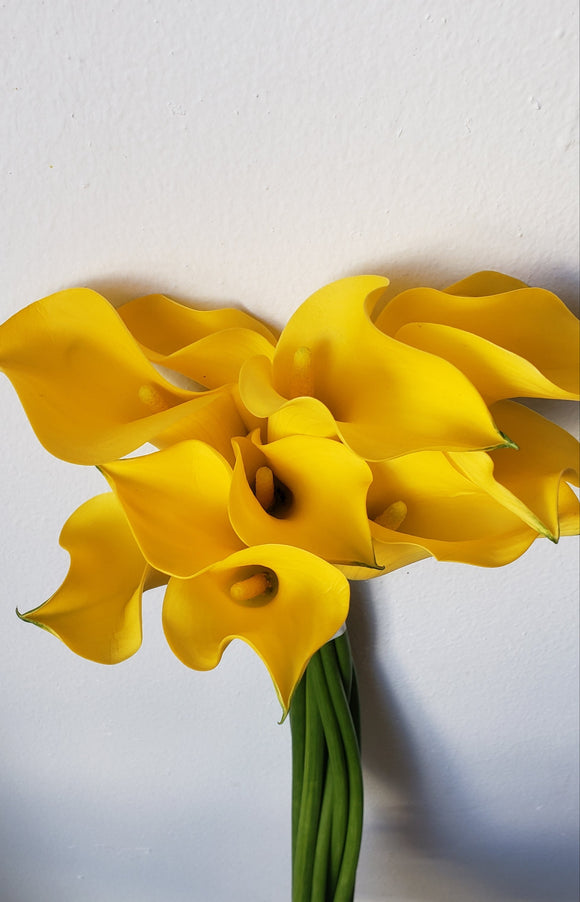 Calla Mini Yellow