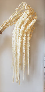 Bleached Hanging Amaranthus