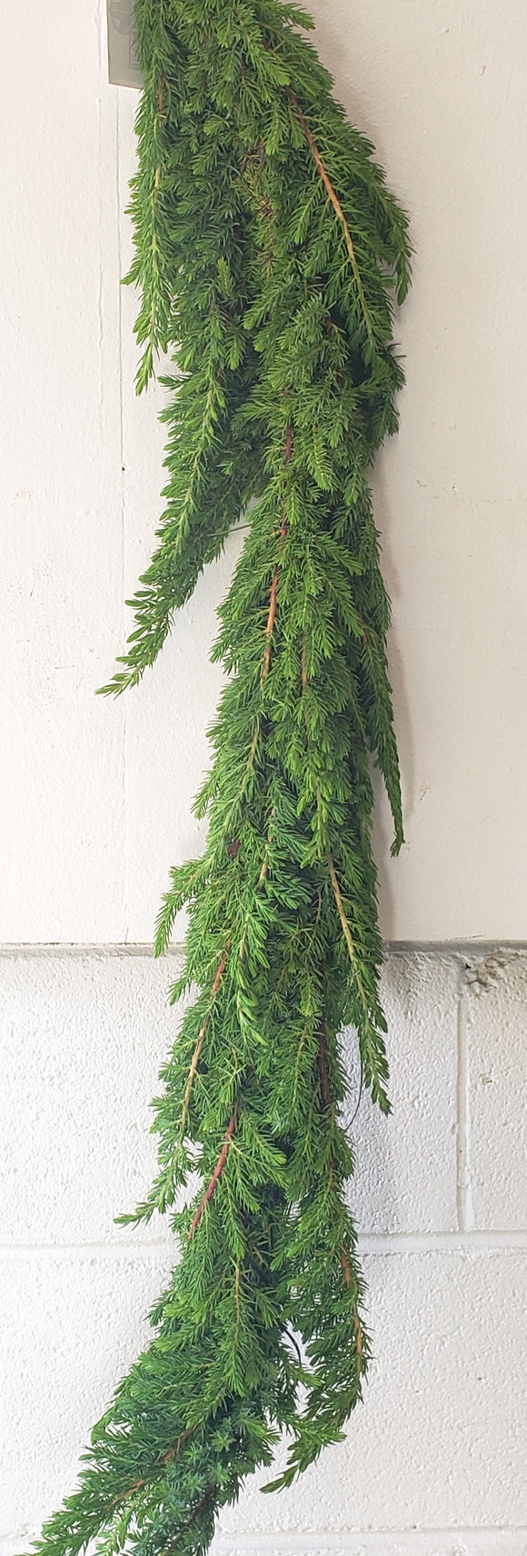Garland Ming Pine (price per foot)
