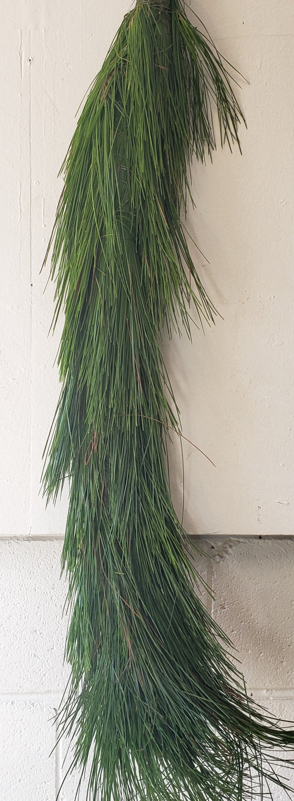 Garland Long Needle Pine (price per foot)