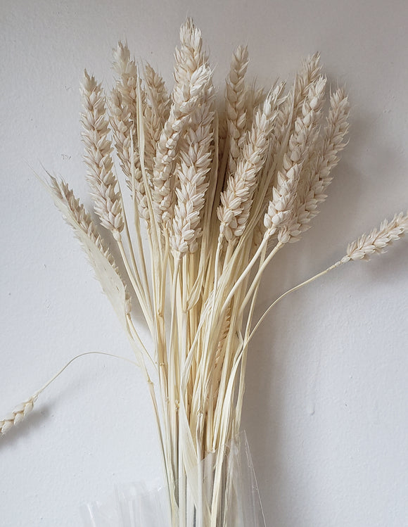 Bleached Wheat