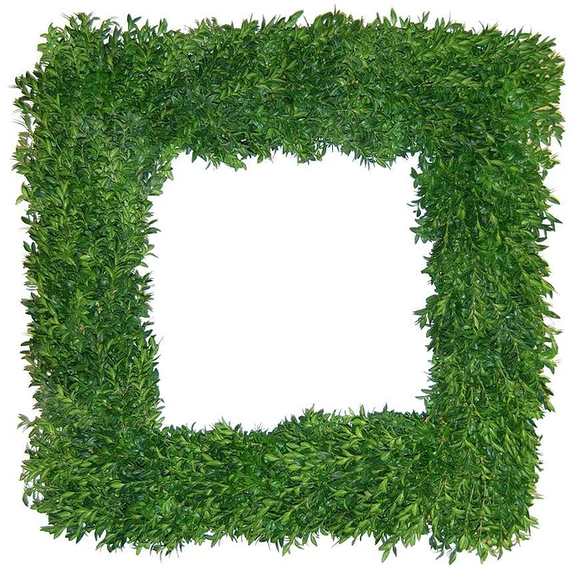 Wreath Boxwood Sqaure
