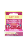 Burt's Bees Lip Balm with Flavor Crystals, 4.25g - Green Valley Pharmacy Ottawa Canada