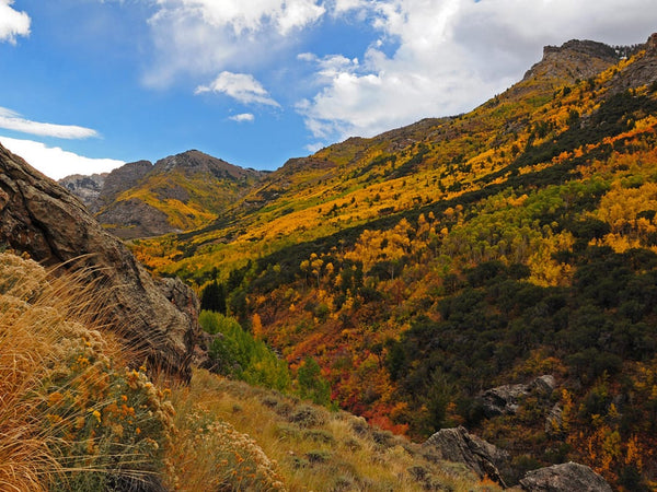 10 Amazing Fall Hikes Across the Country