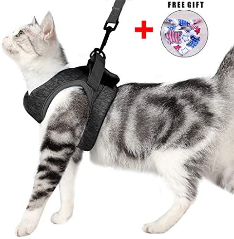 Cat Harness Leash Set