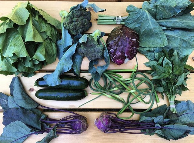 One Vegetable Share - Burrough Hall
