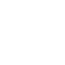 Foo Fighters AUS
