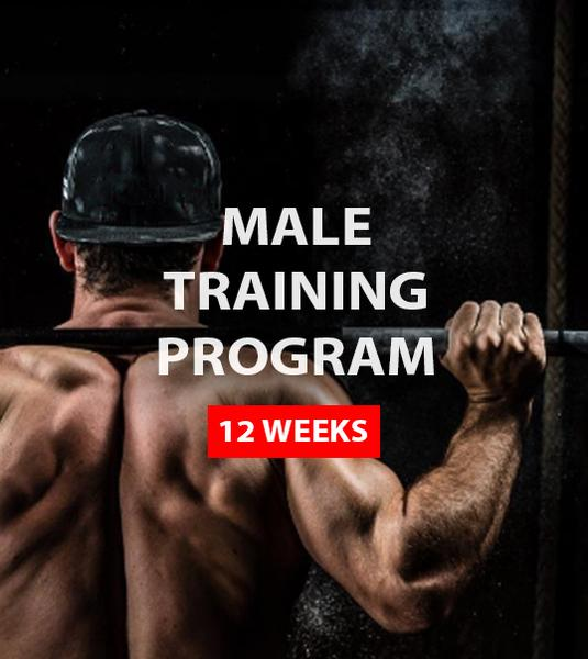 Male Training Program (12 weeks)