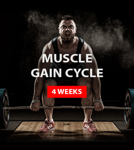 MUSCLE GAIN CYCLE (4 weeks)