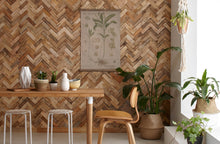 Timberwall New Zealand introduces the new Reclaimed feature wall Collection
