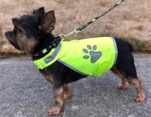 High Visibility, Reflective Dog Vest