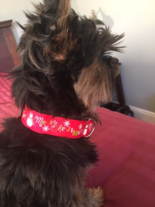 Holiday Collar, Red
