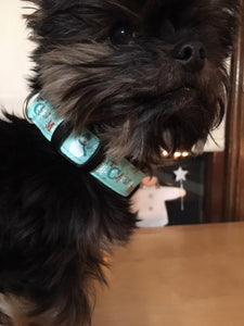 Holiday Collar, Blue