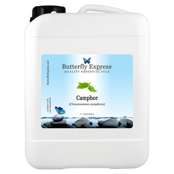 Camphor White Essential Oil Gallon Wholesale