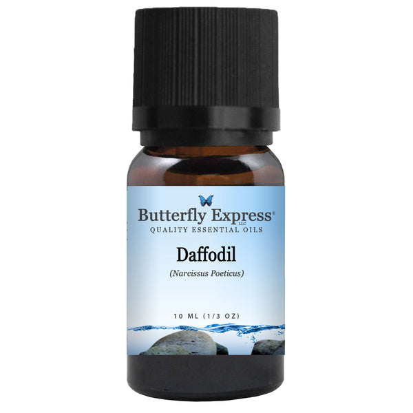 Daffodil Essential Oil Wholesale<h6>Narcissus poeticus</h6>
