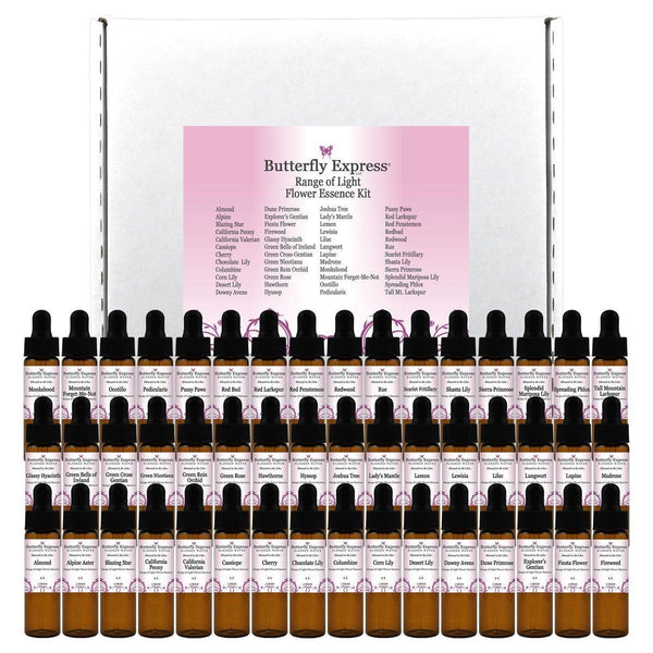 Range of Light Flower Essence Blessed Water Kit Wholesale