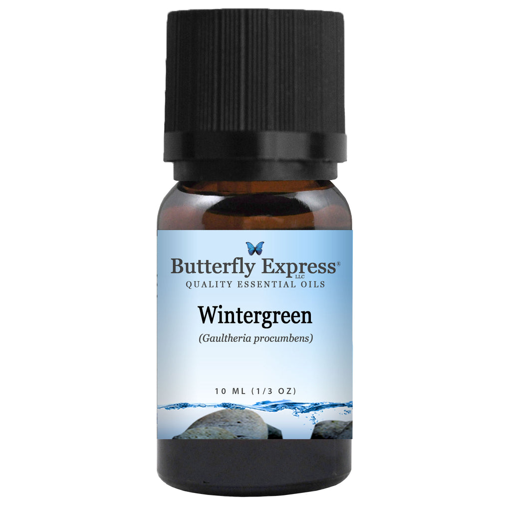 Wintergreen Essential Oil<h6>Gaultheria procumbens</h6>
