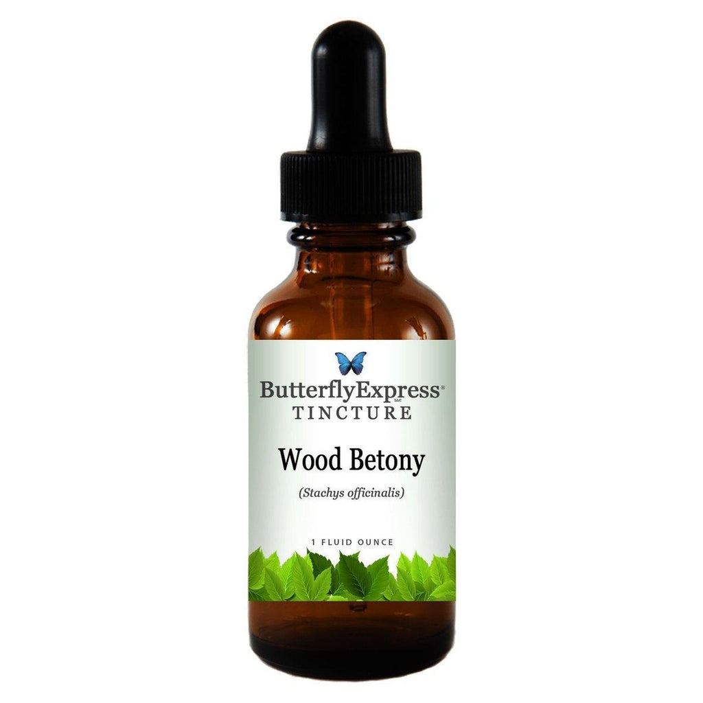 Wood Betony Tincture<h6>Stachys officinalis</h6>
