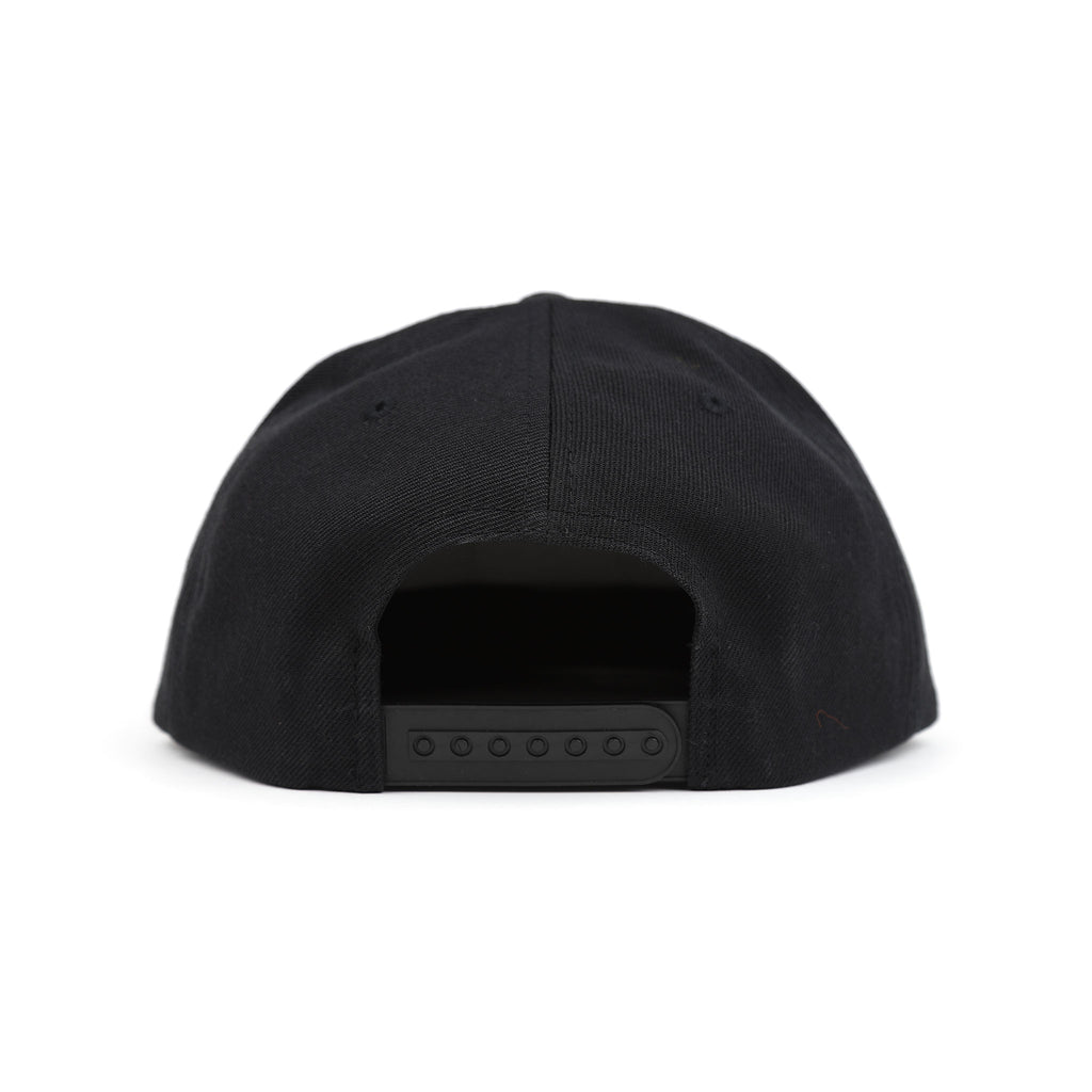Pleasures Digital Snapback Hat Cap Back Black