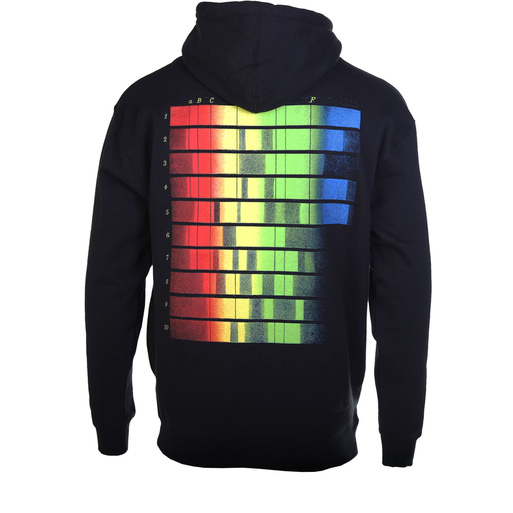 Pleasures Black Spectrum Hoodie Back