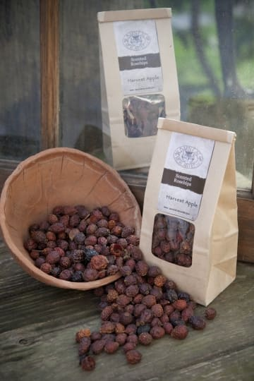 Scented Rose Hips - Barn Cat Mercantile, LLC