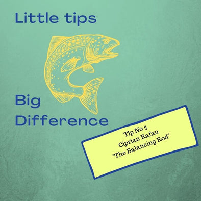 "Little Tips Big Difference 3, Ciprian Rafan: ""The Balancing Rod"""