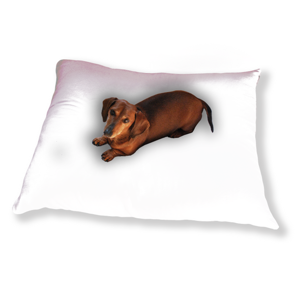 Lovely lilies flowers and leaves Dog Pillows