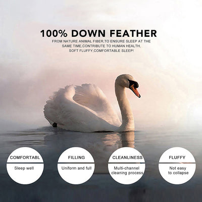 Premium White Goose Feather Firm Pillows for Sleeping Standard&King Size, 100% Cotton Cover, Set of 2
