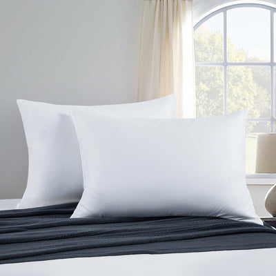 2 Pack Memory Foam Goose Feather Bed Pillows, 100% Cotton Cover